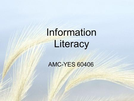 Information Literacy AMC-YES 60406. Programme Introduction lecture Practicals Feedback lecture Blackboard modules Marja Duizendstraal Hans Fransen Marco.