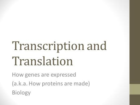 Transcription and Translation How genes are expressed (a.k.a. How proteins are made) Biology.