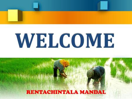 WELCOME RENTACHINTALA MANDAL Presentation On Strategic Action Plan For Achieving Double Digit Growth in Rentachintala Mandal By Narasimha Potla, Mandal.