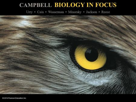 CAMPBELL BIOLOGY IN FOCUS © 2014 Pearson Education, Inc. Urry Cain Wasserman Minorsky Jackson Reece.