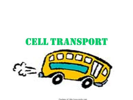 CELL TRANSPORT Courtesy of: