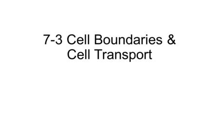 7-3 Cell Boundaries & Cell Transport Copyright Pearson Prentice Hall 7-3 Cell Boundaries All cells are surrounded by a thin, flexible barrier known as.