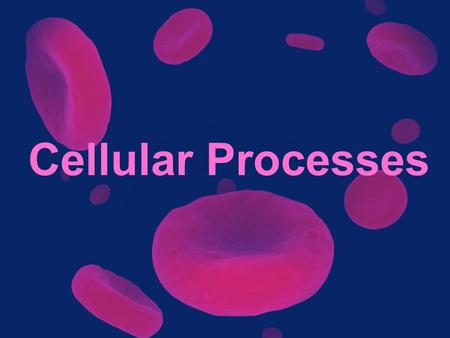 "Cellular Processes. Homeostasis The ability or tendency to maintain internal equilibrium. –Maintain – ""keep"" –Internal – ""inside"" –Equilibrium – ""stable."