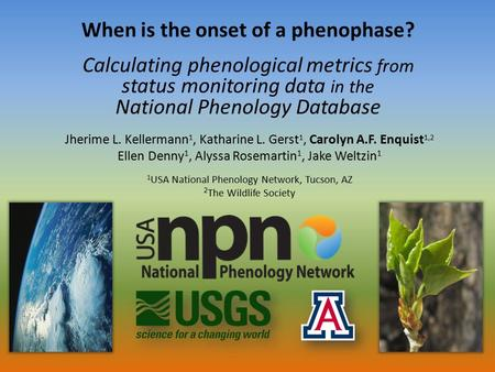When is the onset of a phenophase? Calculating phenological metrics from status monitoring data in the National Phenology Database Jherime L. Kellermann.