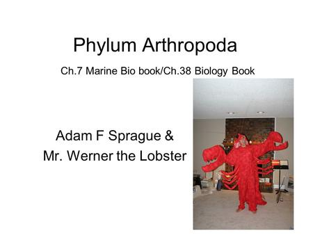 Phylum Arthropoda Ch.7 Marine Bio book/Ch.38 Biology Book Adam F Sprague & Mr. Werner the Lobster.