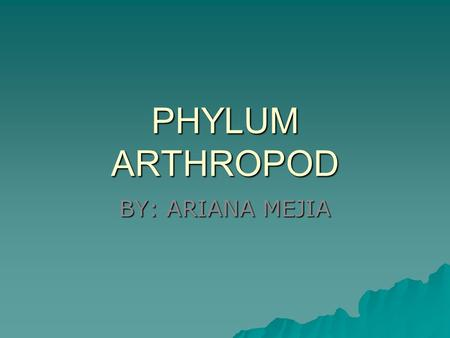 PHYLUM ARTHROPOD BY: ARIANA MEJIA. CHARACTERISTICS  Segmented body plan  Exoskeleton  Has an open circulatory system  Nervous system has a dorsal.