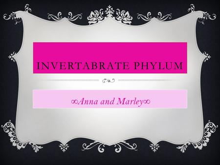 INVERTABRATE PHYLUM ∞Anna and Marley∞. PORIFERA/SPONGES EXAMPLE: VENUS FLOWER-BASKET  Definition- A type of animal that filters water it lives in to.