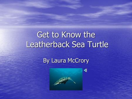 Get to Know the Leatherback Sea Turtle By Laura McCrory.