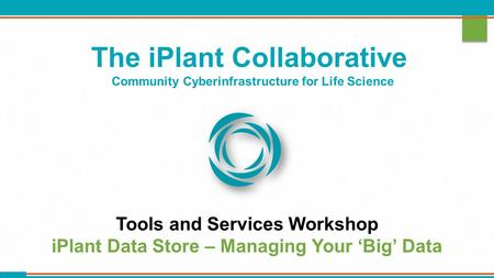 The iPlant Collaborative Community Cyberinfrastructure for Life Science Tools and Services Workshop iPlant Data Store – Managing Your 'Big' Data.