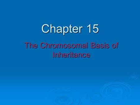 Chapter 15 The Chromosomal Basis of Inheritance. Fig. 15-1 The location of a particular gene can be seen by tagging isolated chromosomes with a fluorescent.