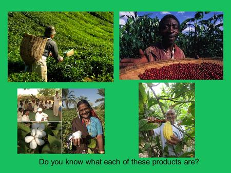 Do you know what each of these products are?. Theme B: Contrasts in World Development Part 3: Sustainable solutions to unequal development 1.Appropriate.