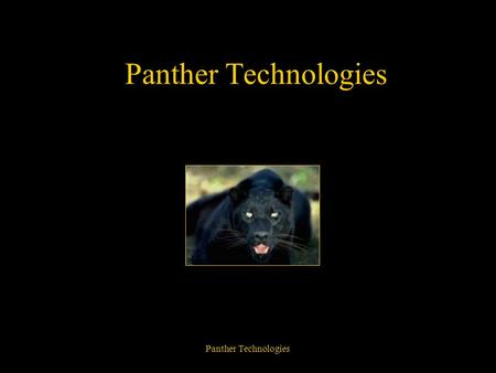 Panther Technologies Paper Products Diskettes Compact Discs Flash Drive Diskettes.