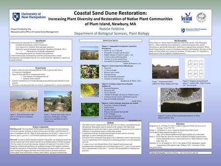 Contact Information: Natalie Feldsine, Coastal Sand Dune Restoration : Increasing Plant Diversity and Restoration of Native Plant.