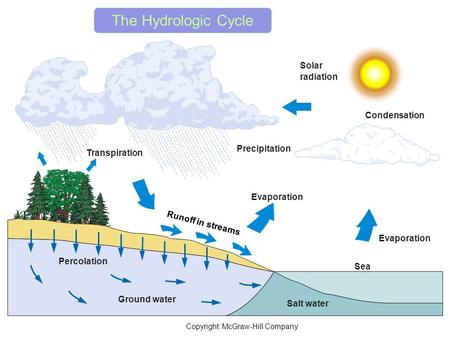 Percolation Condensation Solar radiation Evaporation Sea Salt water Ground water Precipitation Transpiration Runoff in streams Copyright: McGraw-Hill.