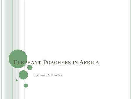 E LEPHANT P OACHERS IN A FRICA Lauren & Karlee. E LEPHANT P OACHING Poaching in Africa effects not only Africa itself but the world on a global scale.