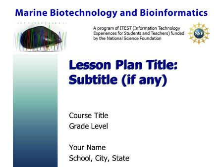 A program of ITEST (Information Technology Experiences for Students and Teachers) funded by the National Science Foundation Lesson Plan Title: Subtitle.