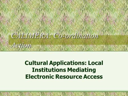 CALIMERA: Co-ordination Action Cultural Applications: Local Institutions Mediating Electronic Resource Access.