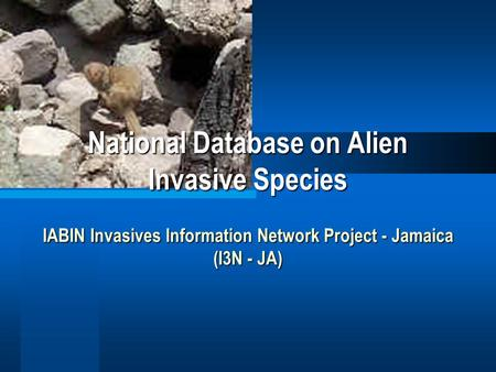 National Database on Alien Invasive Species IABIN Invasives Information Network Project - Jamaica (I3N - JA)