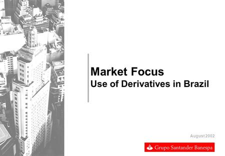 Market Focus Use of Derivatives in Brazil August 2002.