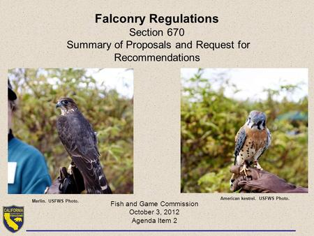 Falconry Regulations Section 670 Summary of Proposals and Request for Recommendations Fish and Game Commission October 3, 2012 Agenda Item 2 Merlin. USFWS.