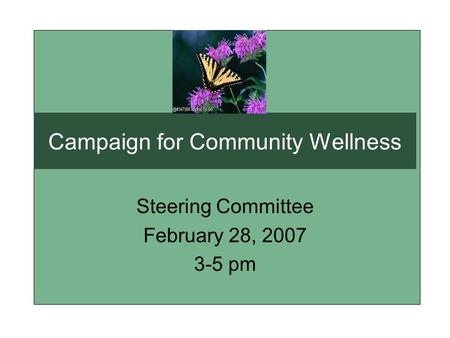 Campaign for Community Wellness Steering Committee February 28, 2007 3-5 pm.