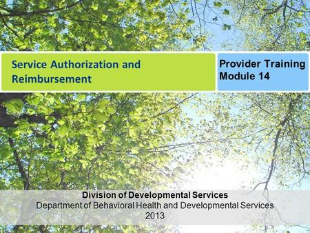 Service Authorization and Reimbursement Division of Developmental Services Department of Behavioral Health and Developmental Services 2013 Provider Training.