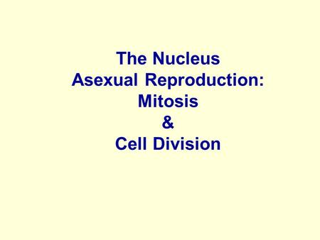 The Nucleus Asexual Reproduction: Mitosis & Cell Division.