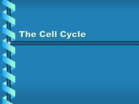 The Cell Cycle. Cell Division is Mitosis For single celled organisms, this increases their population.For single celled organisms, this increases their.