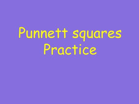 Punnett squares Practice. The tool which uses the combination of alleles to predict the probability of traits showing up in offspring.