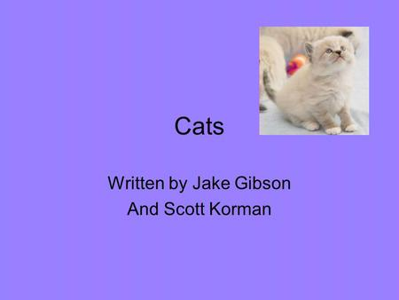 Cats Written by Jake Gibson And Scott Korman. As kittens grow up they continually change and learn new things. Kittens are born with blue eyes but they.