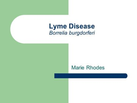 Lyme Disease Borrelia burgdorferi Marie Rhodes. Vector Blacklegged tick or deer tick (northeastern and north-central US) Western blacklegged tick (pacific.