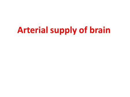 Arterial supply of brain
