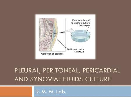 Pleural, peritoneal, pericardial and synovial fluids culture