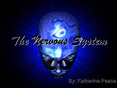The Nervous System By: Katherine Pease