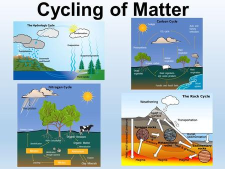 Cycling of Matter Carbon Cycle Nitrogen Cycle. Ecosystems TEKS TEK 7.5 B – Demonstrate and explain the cycling of matter within living systems such as.