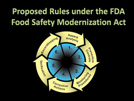 Food Safety Plan needed with commitment to food safety. Someone in charge of food safety. Policy for Food Safety violations.