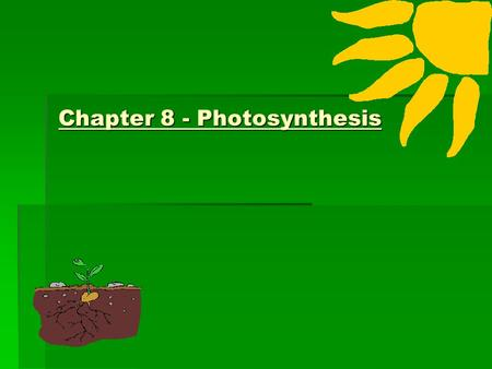 Chapter 8 - Photosynthesis. Overview of Photosynthesis and Respiration Overview of Photosynthesis and Respiration 3. PHOTOSYNTHESIS 5. RESPIRATION 1.