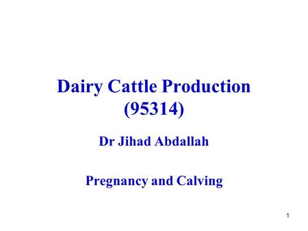1 Dairy Cattle Production (95314) Dr Jihad Abdallah Pregnancy and Calving.