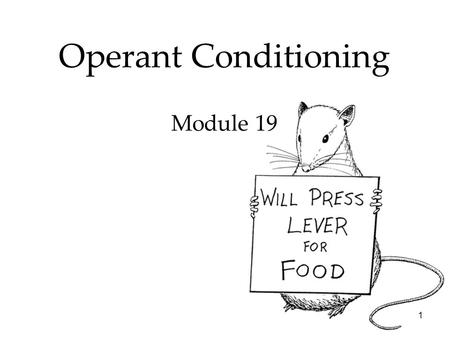 1 Operant Conditioning Module 19. 2 Learning Operant Conditioning Overview  Skinner's Experiments  Extending Skinner's Understanding  Skinner's Legacy.