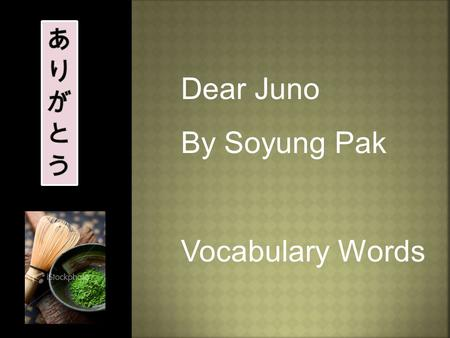 Dear Juno By Soyung Pak Vocabulary Words  answer  company  faraway  parents  picture  school  wash  envelope  persimmons  photograph  smudged.