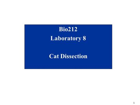 1 Bio212 Laboratory 8 Cat Dissection. 2 Lab Schedule for Rest of Semester Cat dissection labs –Dissection 1(today) Preparing the cat Cardiovascular (Lab.
