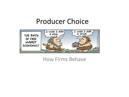 Producer Choice How Firms Behave. What are Profits?