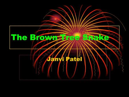 The Brown Tree Snake Janvi Patel.
