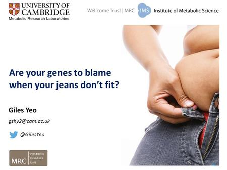 Are your genes to blame when your jeans don't fit? Giles