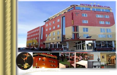 "Hotel STRELITIA*** is situated on the most important artery of Timisoara (E70), 10 minutes from the International Airport ""Traian Vuia"" and only 5 minutes."