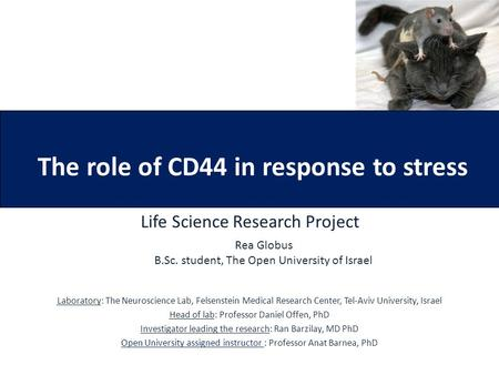 The role of CD44 in response to stress Life Science Research Project Laboratory: The Neuroscience Lab, Felsenstein Medical Research Center, Tel-Aviv University,