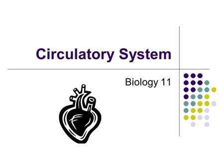 Circulatory System Biology 11. Video PBS: Mysterious Human Heart.