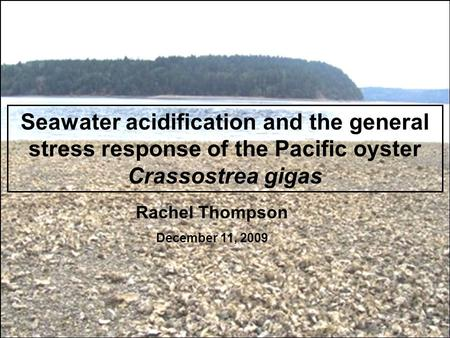 Seawater acidification and the general stress response of the Pacific oyster Crassostrea gigas Rachel Thompson December 11, 2009.