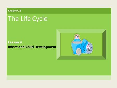 Chapter 11 The Life Cycle Lesson 4 Infant and Child Development.