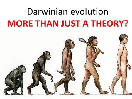 Darwinian evolution MORE THAN JUST A THEORY?. DO YOU AGREE?